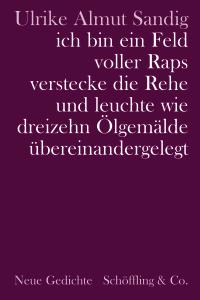 Sandig_Feld voller Raps